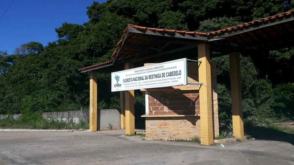 Floresta da Restinga foi devolvida a Prefeitura de Cabedelo após decisão do governo federal (Foto: Divulgação/ICMBio)