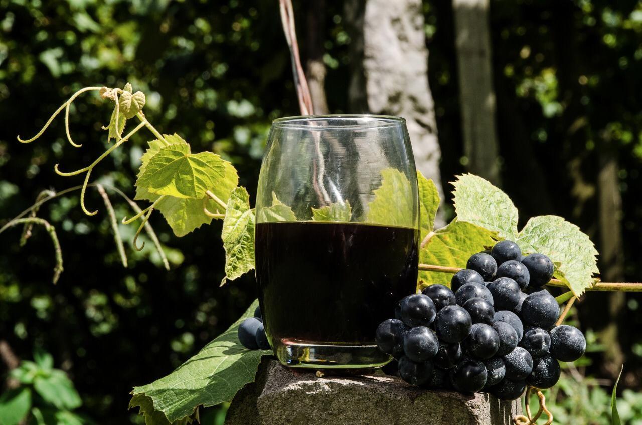 As variedades Chardonnay e Pinot Noir se destacaram para excelentes vinhos base para espumante. Já as castas Merlot e Cabernet Sauvignon garantem vinhos tintos nobres