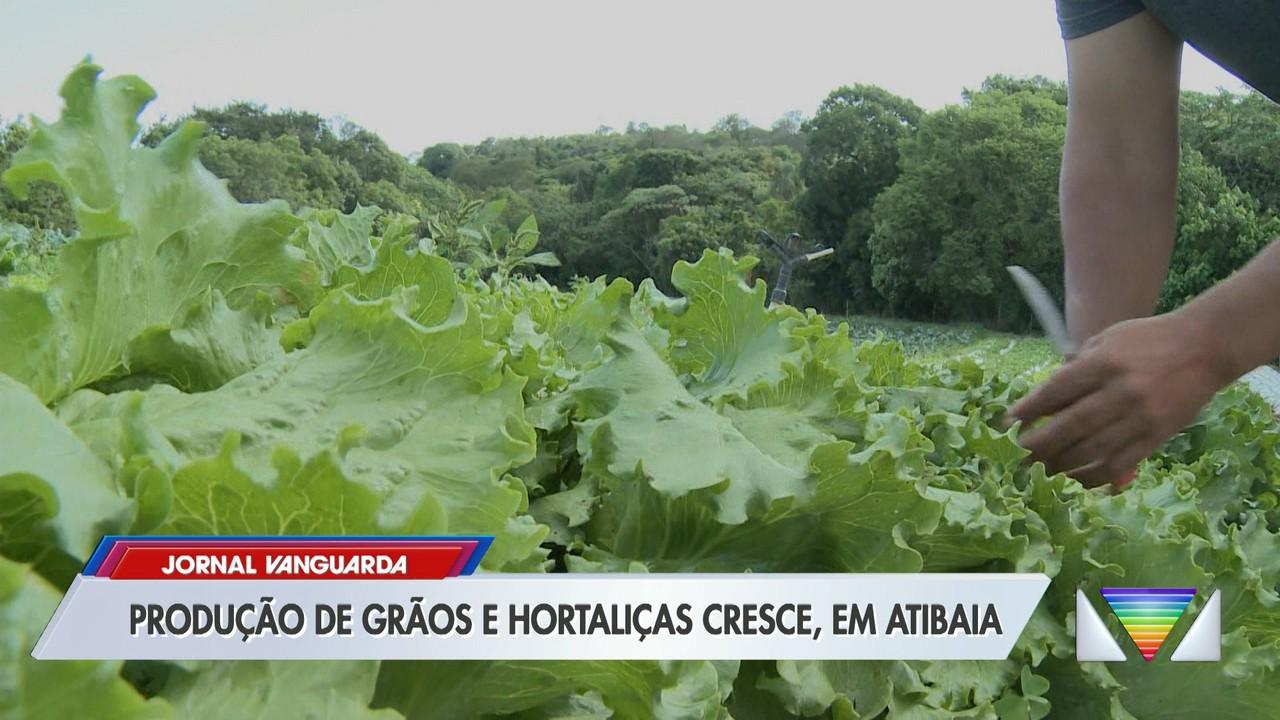 Produção de grãos e hortaliças cresce em Atibaia