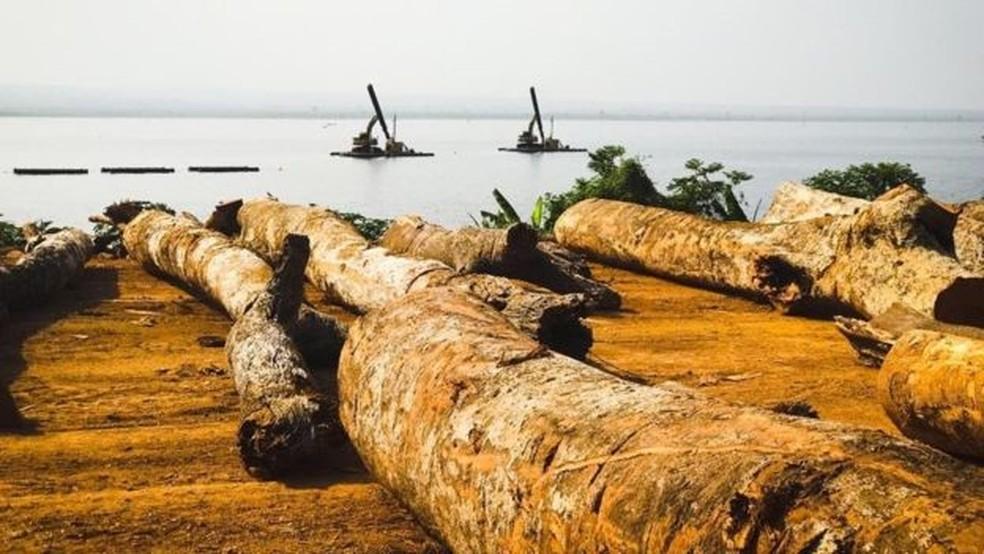 Madeira do lago Volta poderia impulsionar economia de Gana, mas também afetar ganha-pão de centenas de milhares de pescadores — Foto: Dennis Ivers