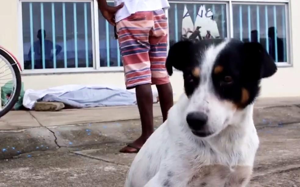 Homem e assassinado com pedra em calçada na BA e cachorro de vítima fica ao lado do corpo até chegada da polícia — Foto: Radar64