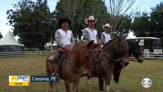 ExpoCarpina recebe mais de 1,5 mil animais de cinco estados