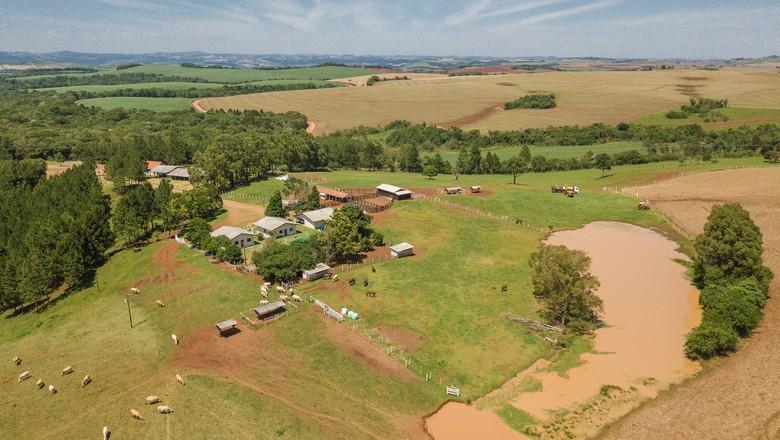fazenda-rio-do-pedro (Foto: Globo Rural)