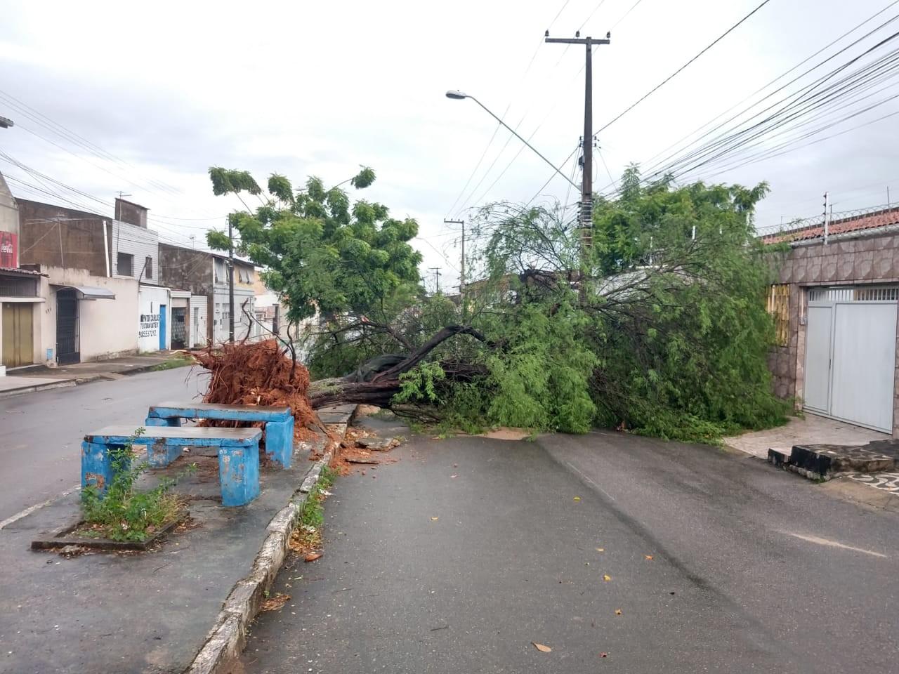 Fortaleza registra rajadas de vento de 49 km/h entre quarta e quinta-feira