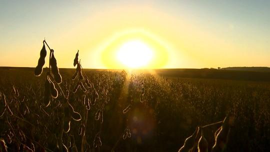 Série mostra bastidores da colheita de soja para safra 2017/2018 no Paraná