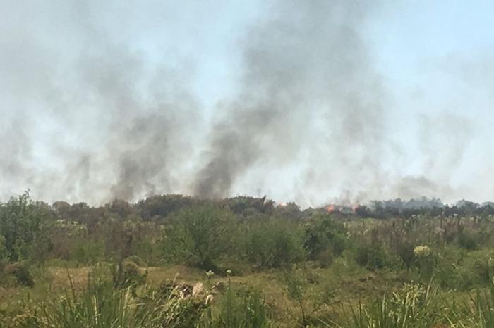 Incêndio atinge área de vegetação em Eldorado do Sul