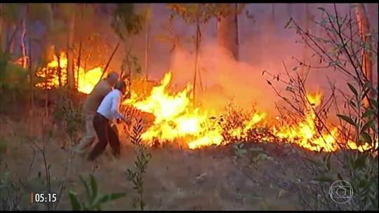 Chuva ajuda a controlar incêndios que mataram 36 em Portugal