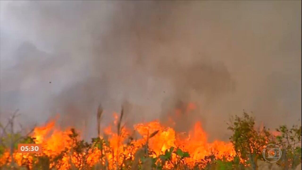 Comissão da Câmara apresenta relatório final sobre os incêndios que devastaram o Pantanal