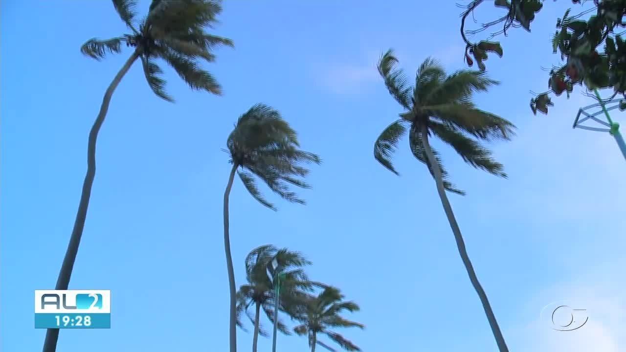 Vento Nordeste tem aliviado altas temperaturas em Maceió