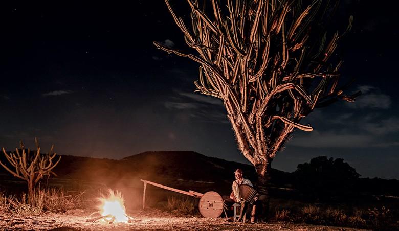 Vaqueiros do Pajeú - Acima, o sanfoneiro na solidão da Caatinga (Foto: José Medeiros)