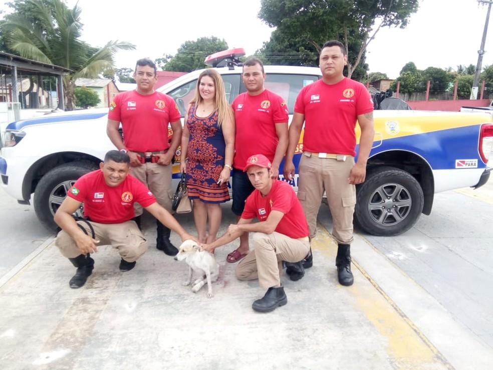 Bombeiros Civis com a cadelinha Vitória em Oriximiná — Foto: Reprodução/Facebook/Bombeiros Civis de Oriximiná