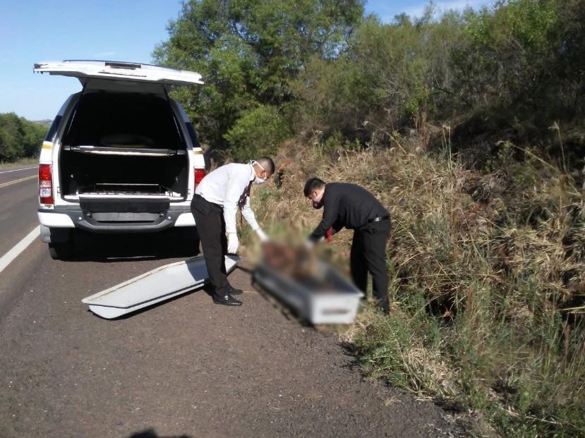 Cadáver sem cabeça é encontrado na BR-290 em Alegrete