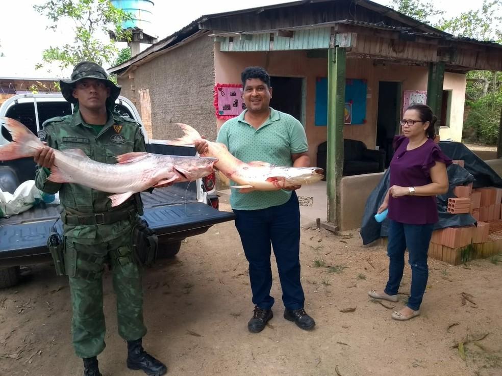 Peixes apreendidos foram doados à Apae (Foto: Polícia Militar Ambiental/Divulgação)