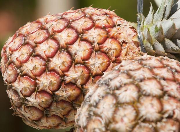 10 frutas para diminuir a celulite (Foto: Thinkstock)