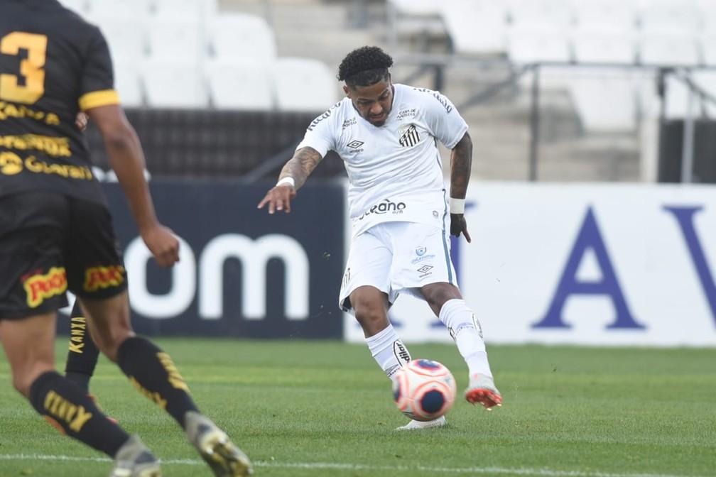 Marinho é um dos destaques do Santos — Foto: Ivan Storti/Santos FC