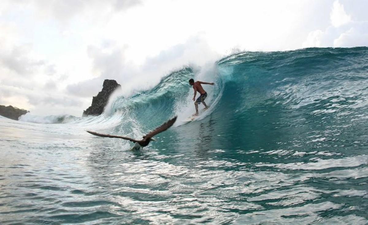 Resultado de imagem para Campeonato mundial de surf movimenta Fernando de Noronha