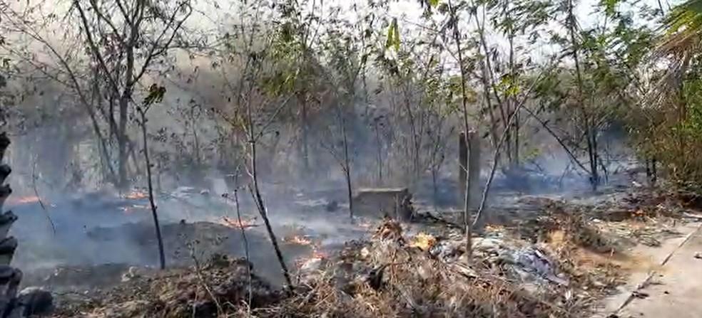 Fogo atinge área de vegetação em Fortaleza — Foto: Arquivo pessoal