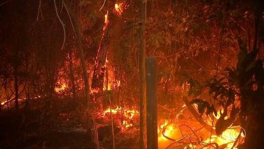 Incêndios registrados no final de semana causam estragos na região de Bauru