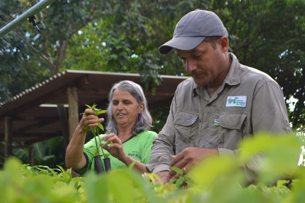 Um dos trabalhos junto à comunidade é a plantação de mudas — Foto: Laurie Hedges