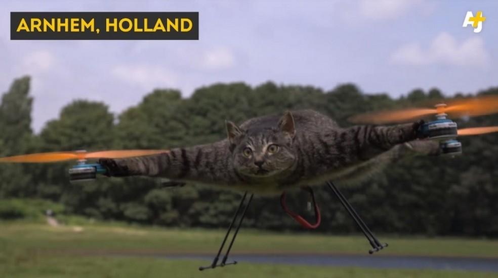 Empresa holandesa faz drones a partir de animais mortos  (Foto: Divulgação/Copter Company)