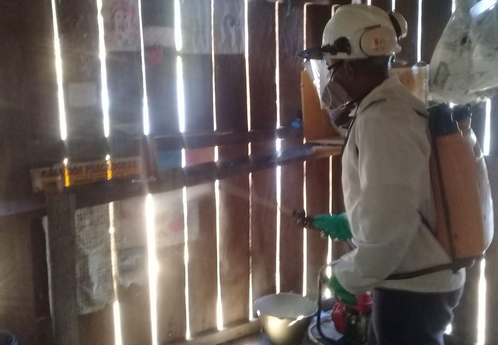 Equipes do projeto aplicam inseticida nas paredes das casas  — Foto: Ascom MRN/Divulgação