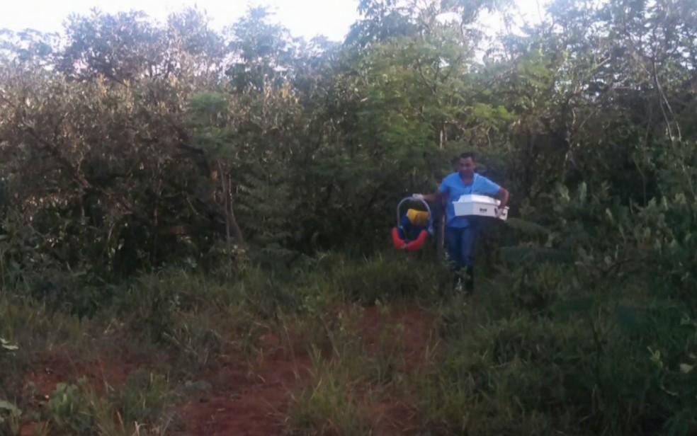 Bebês gêmeos foram encontrados mortos em estrada de terra em Buritizal (SP)
