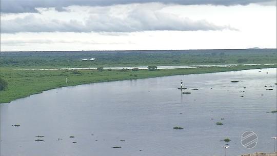 Cheia antecipada no Pantanal de MS preocupa criadores