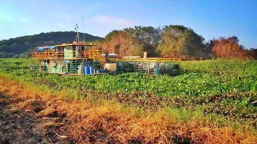 O barco que transportava 20 pessoas e puxava outra embarcação com 70 cabeças de gado, ficou presa na vegetação do rio Negrinho no Pantanal de MS. — Foto: Marcio Avellar/Reprodução