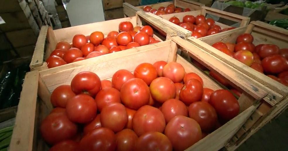 -  Preço tomate caiu 31,18% em Divinópolis no mês de junho  Foto: Reprodução/ TV Globo