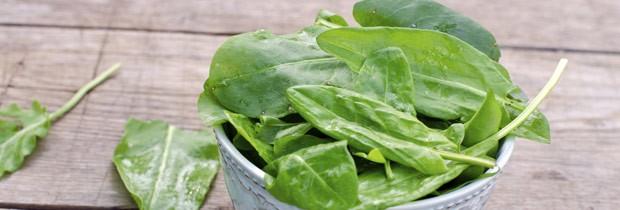 Rico em vitamina A, o espinafre baby pode ser jogado sobre massas e sopas (Foto: Think Stock)