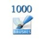 1000 Brushes