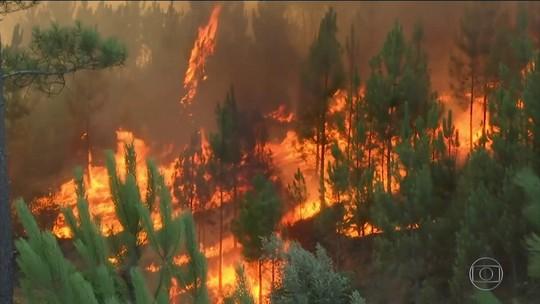 Risco de incêndios florestais deixa Portugal em estado de calamidade