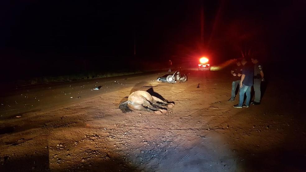 Mulher morre após moto bater em cavalo solto na pista em Jaú — Foto: Arquivo Pessoal/Luiz Andretto