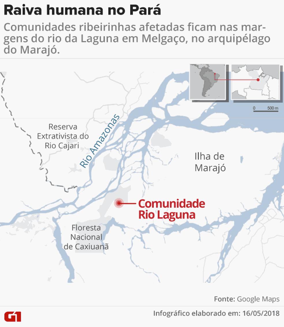 Raiva humana deixa vítimas fatais no Pará. (Foto: Arte G1)