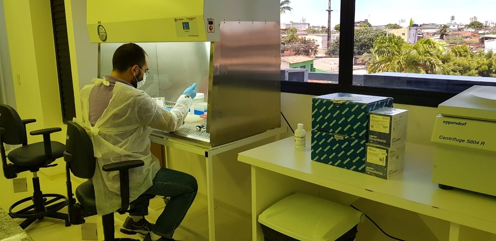 Teste sendo realizado do Instituto de Medicina Tropical da UFRN — Foto: Glória Monteiro/Divulgação/UFRN