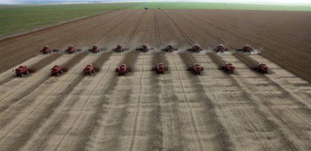 Trabalho em silos se intensifica no período de colheita de grãos; em 2017, safra atingiu níveis recordes (Foto: Reuters via BBC News Brasil)
