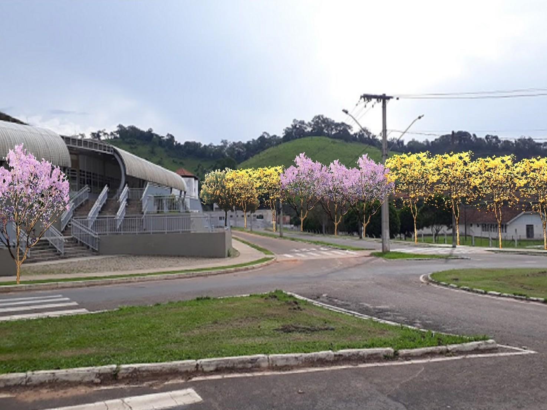 Volta às aulas em Viçosa: Colégio de Aplicação CAp-Coluni e UFV retomam atividades em formato híbrido em 2022