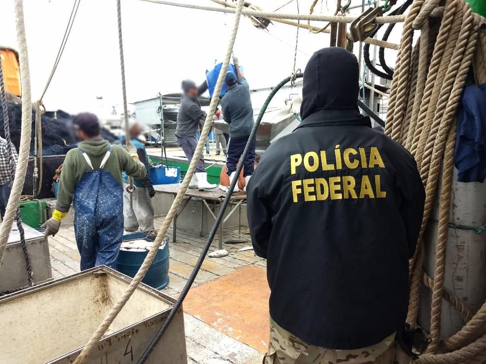 Operação em Rio Grande apreende 150 toneladas de peixes — Foto: PF/Divulgação