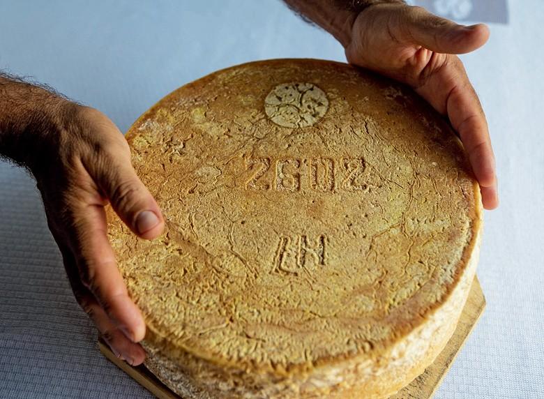 Queijo Artesanal: um queijo maturado da Canastra (Foto: Fernando Martinho)