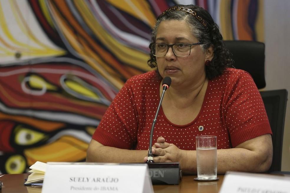 Suely Araújo havia assumido o comando do Ibama na gestão do ex-presidente Michel Temer  — Foto: José Cruz/Agência Brasil