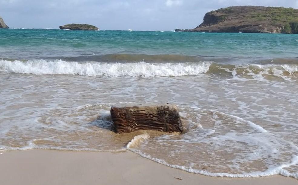 Um dos objetos foi encontrado na Praia do Sueste  — Foto: ICMBio/Divulgação