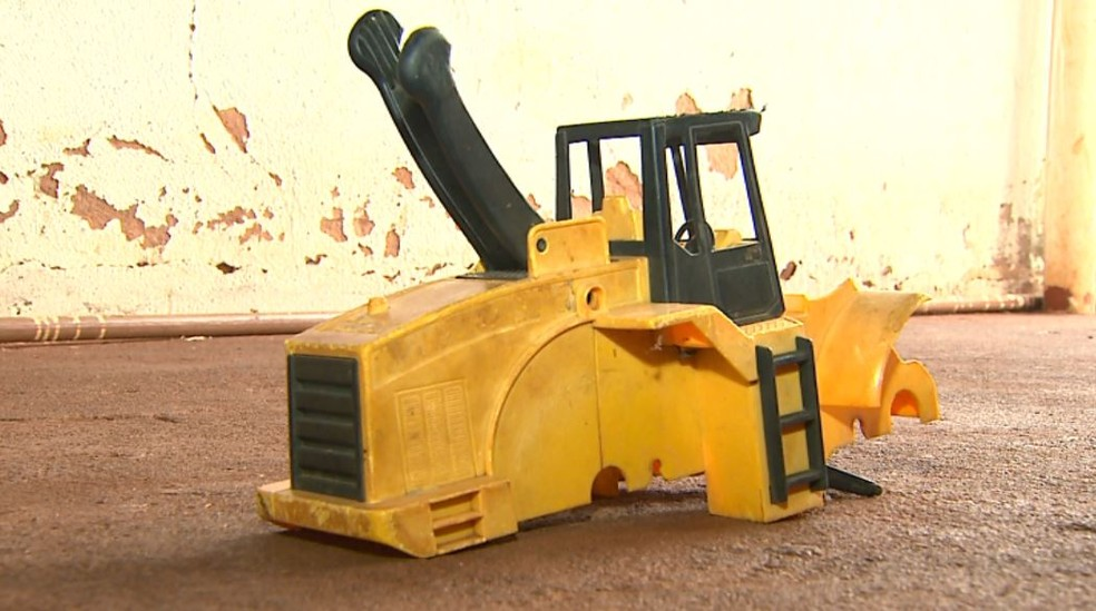 Caminhão de brinquedo escondia escorpião que picou menino em Miguelópolis, SP (Foto: Reprodução/EPTV)