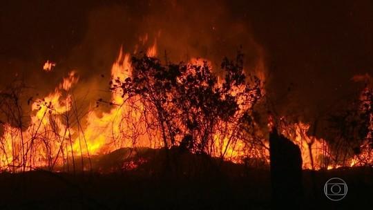 Paredão de fogo no Acre destrói área equivalente a 10 campos de futebol