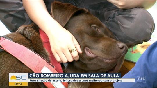 Cidade do Oeste de SC sedia congresso sobre intervenções assistidas por cães