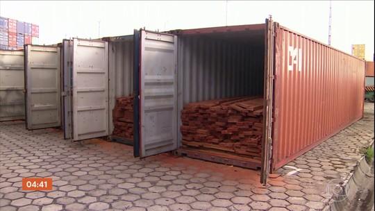 Vinte e seis pessoas são presas em operação contra venda ilegal de madeira na Amazônia