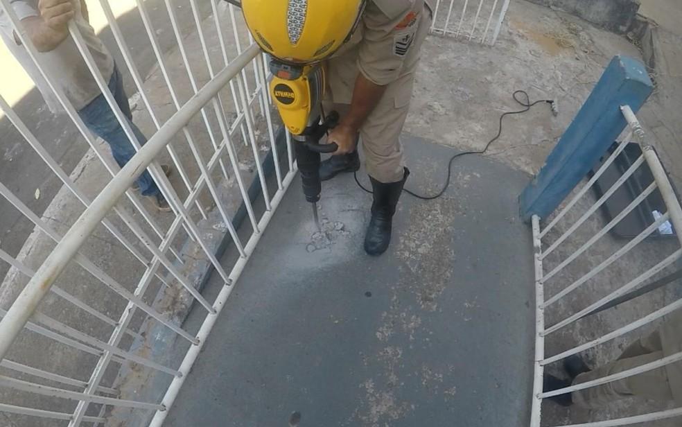 Bombeiros tiveram que furar concreto para retirar animal, em Caldas Novas, Goiás — Foto: Corpo de Bombeiros/Divulgação