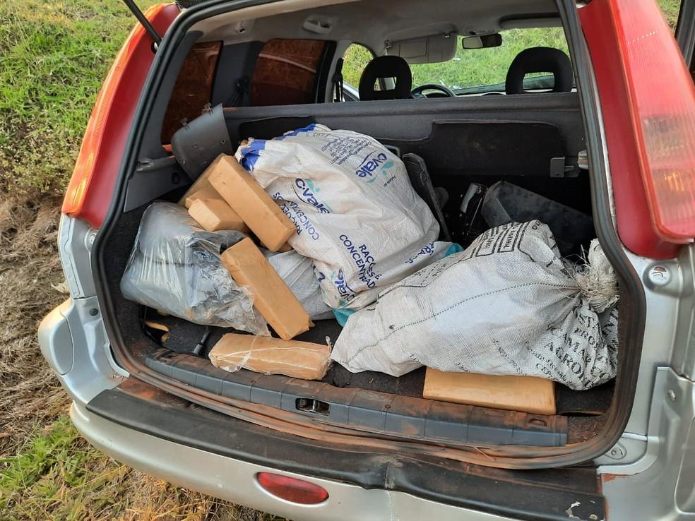 Segundo a polícia, as drogas foram apreendidas e encaminhadas à delegacia para serem contabilizadas — Foto: Polícia Militar Rodoviária/Divulgação