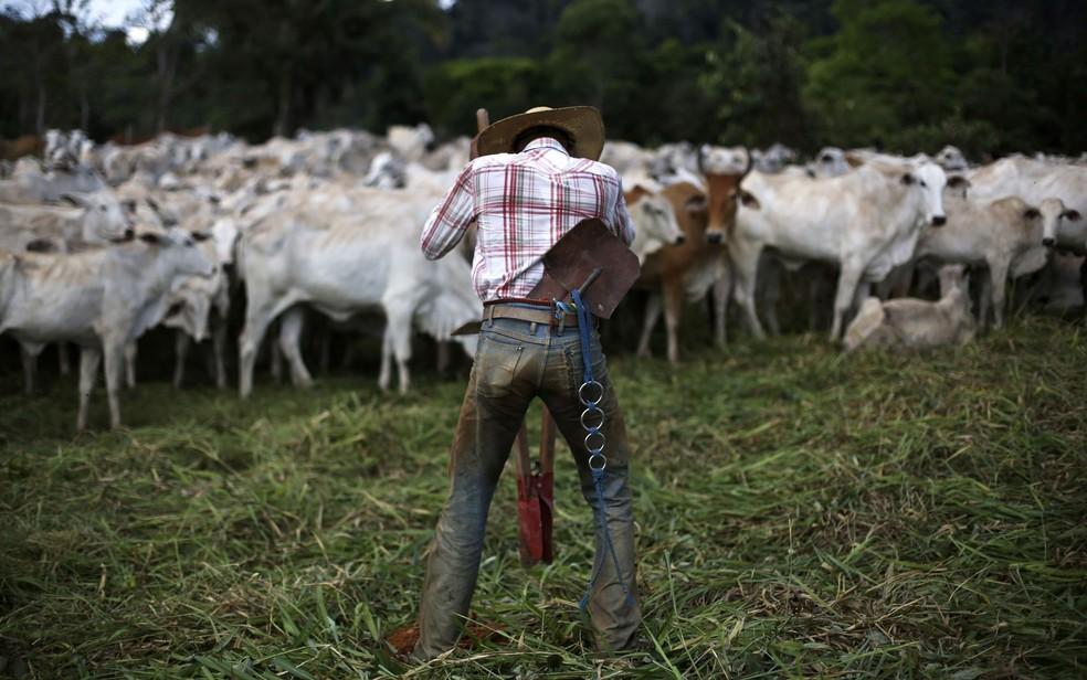 Imagem mostra homem em fazenda de gado no meio da floresta no Pará. Entre outros pontos, o estudo destaca a transparência para saber a procedência de animais criados em áreas da Amazônia — Foto: Nacho Doce/Reuters