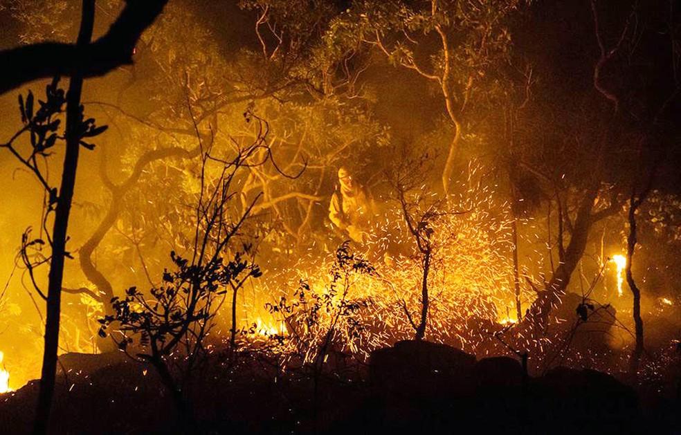 Incêndio florestal é combatido; país registra recorde de queimadas em 2017 (Foto: Fernando Tatagiba/ICMBio/AFP)