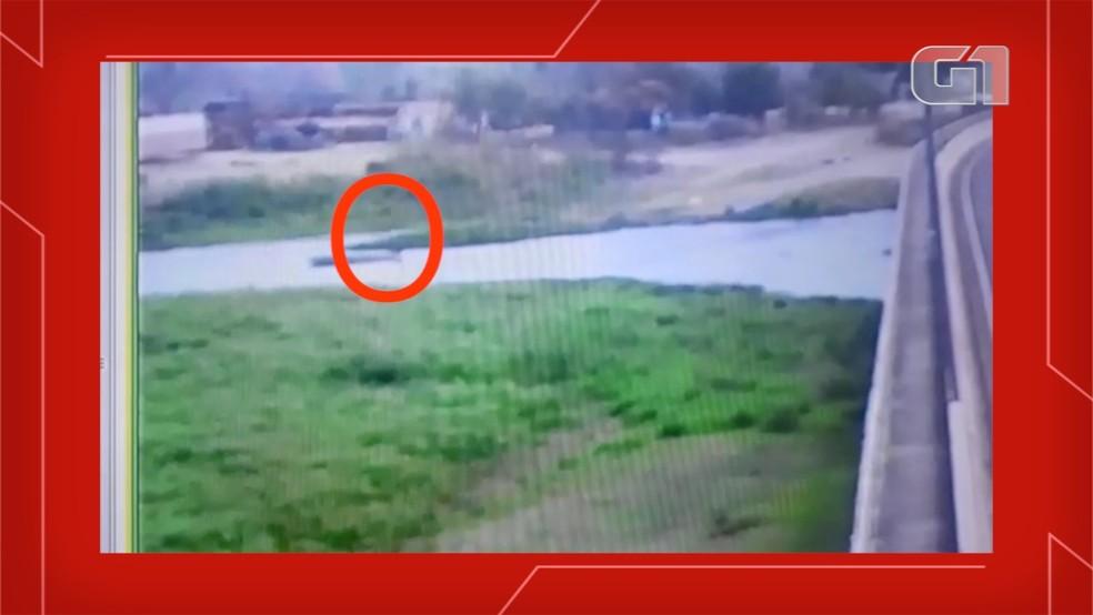 Imagens mostram queda no rio, em MS  Foto: Câmera de segurança